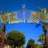 Delray Beach: Explore the heart of Pineapple Grove